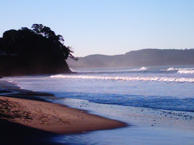 Red Beach Hibiscus Coast